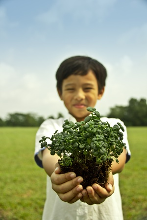 saplings: A boy with plants in his hand, symbol of ecology, greenery and living