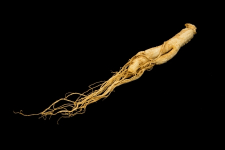 Chinese Traditional Medicine, Ginseng