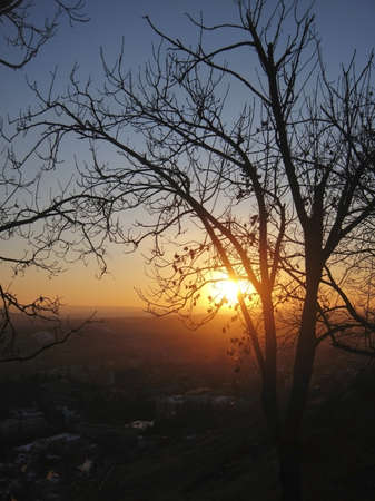 Autumn sunset middle the trees. Fall in Pyatigorsk