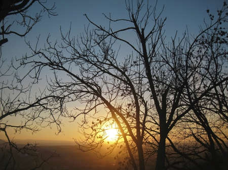 pyatigorsk: Autunno tramonto mezzo agli alberi. Fall in Pyatigorsk Archivio Fotografico