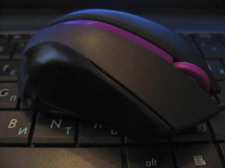 portative: Mouse del computer con la striscia viola imposizione keybord nero di notebook