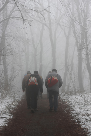 People walking by misty road in the park photo