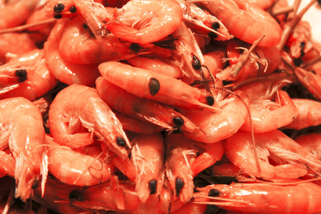 A Boiled Shrimps Background ready for eating Stock Photo