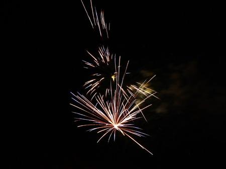 Celebration firework in the black night sky photo