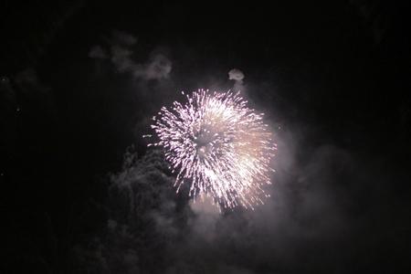 Celebration firework in the black night sky Stock Photo