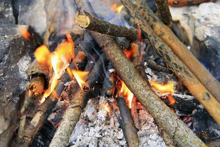 outdoor fireplace: Bonfire in the forest ready for barbeque