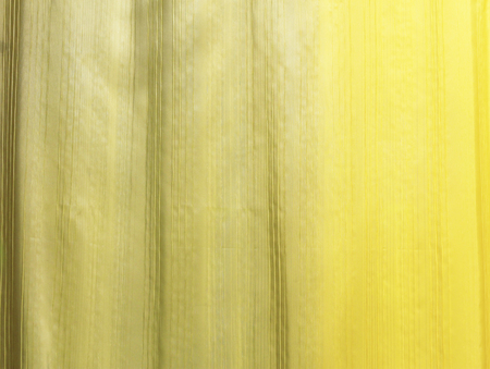 Yellow and Green Silk fabric wallpaper texture pattern background