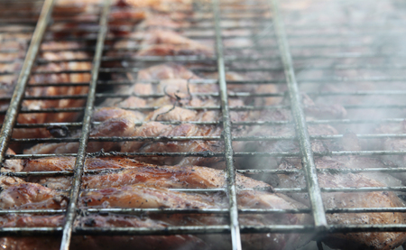 Barbeque Fried On The Bonfire And Coals Stock Photo
