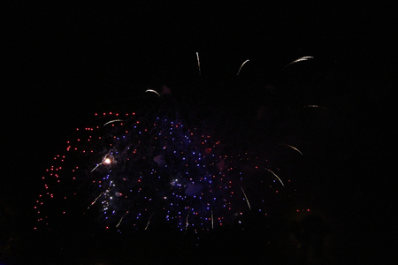 The Celebration colored firework flashing in the black night sky