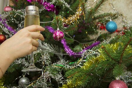 Woman hand holding a glass of champagne against the Christmas tree background