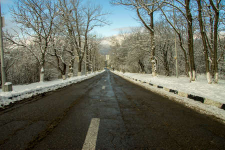 A Winter road of black asphalt with snowy trees aside leading down and clear blue sky background