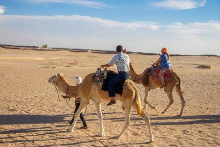 Group of tourists over dromedary camel walking in the sands of Sahara desert, Tunisia, North Africa 13 october 2018 Sajtókép