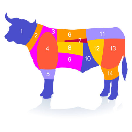 beef cattle: bull meat