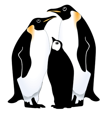 antarctica: penguin family