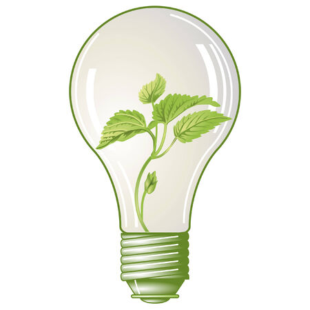 electric bulb: green electricity  Illustration