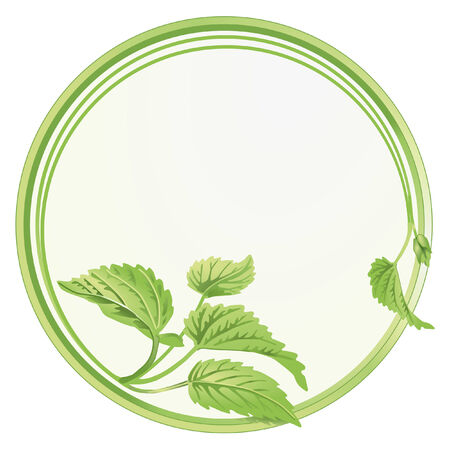 signet: biological circle