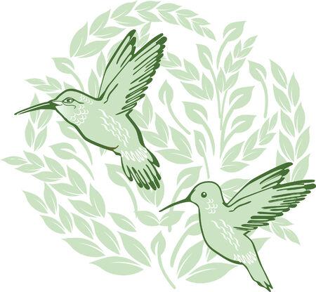 colibries: dos honeysuckers