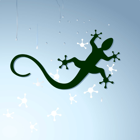 salamander: gecko to crawl  Illustration