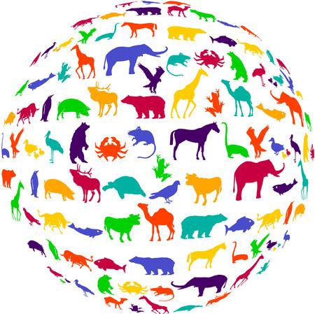 animal shelter: potpourri animal kingdom  Illustration