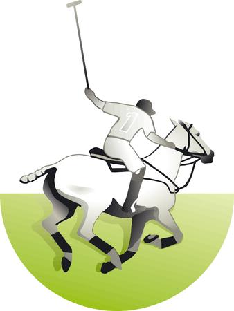 polo sport: Polo
