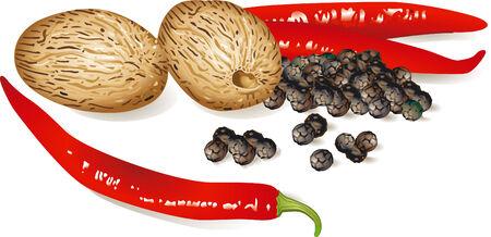 foodstuffs: nutmeg