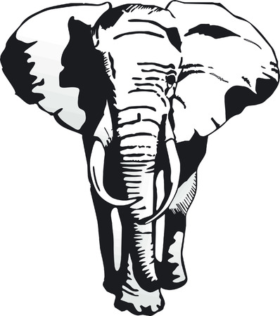 reminding: elephant  Illustration