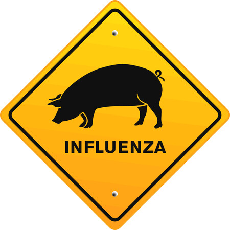 influenza: pig influenza Illustration