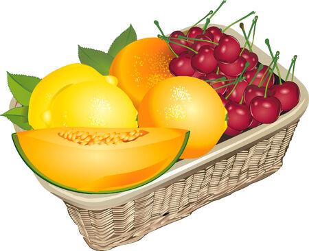 fruited:  fruits