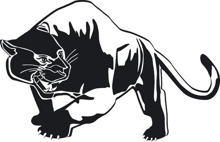 panther: phanter  Illustration