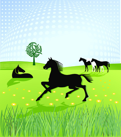 paddock: horses paddock  Illustration