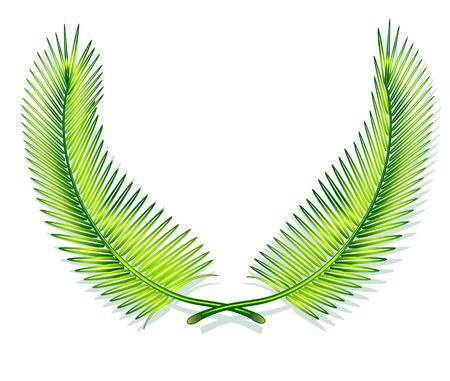 greener: palm leaves