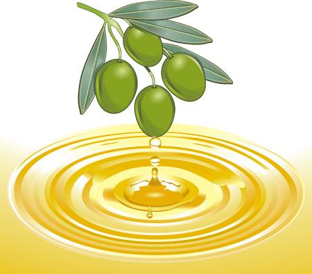 olijf: winning van olijf olie  Stock Illustratie