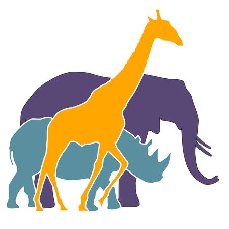 elephant, rhinoceros, giraffe  Vector