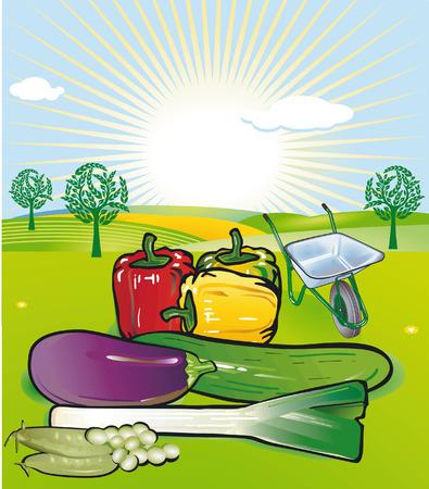 market gardening: market gardening