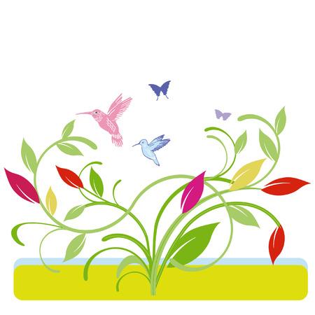 colorful humming-bird Illusztráció