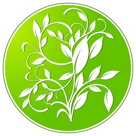 signet: botany sign