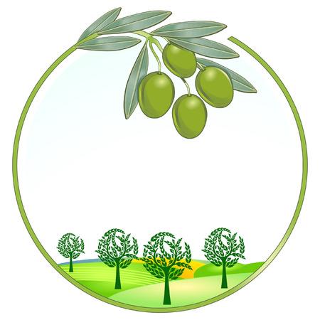 Olives unique landsca Vector