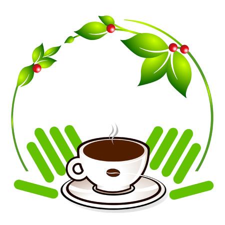 planta de cafe: planta de caf� ecol�gico  Vectores