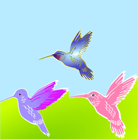 3 flower birds Vector