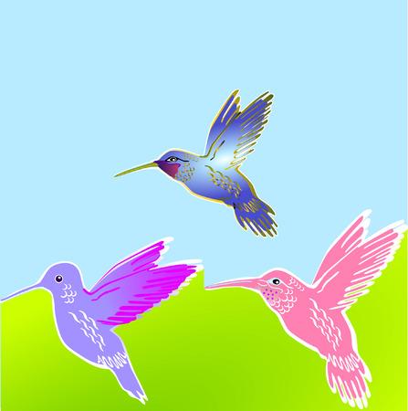 bird of paradise flower: 3 flower birds Illustration