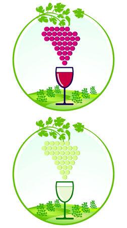 grape, choice wine Vector