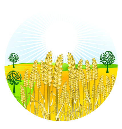 grain harvest Stock Vector - 7385340