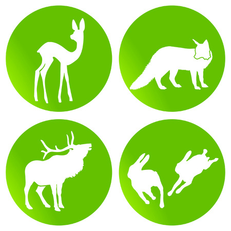 green wildlife Stock Vector - 7435774