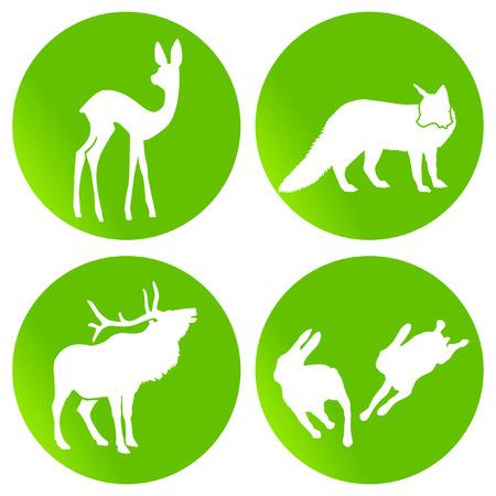 green wildlife Stock Vector - 7435774