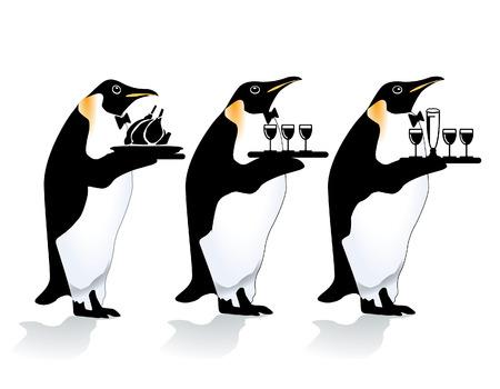 garçon pingouin