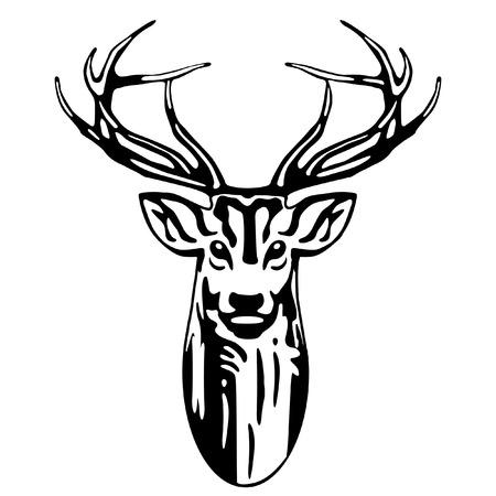 antlers: Deer head
