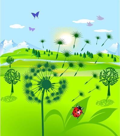 greener: dandelion and ladybird Illustration