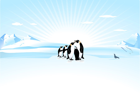 coldly: Antarctica Illustration