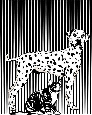 dalmatier: Zwart-wit Stock Illustratie