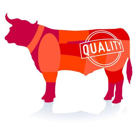 macellaio: Qualit� della carne bovina Vettoriali